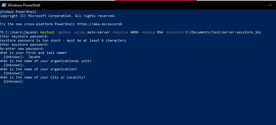 tls mulesoft implementation certificates keystore truststore export client them