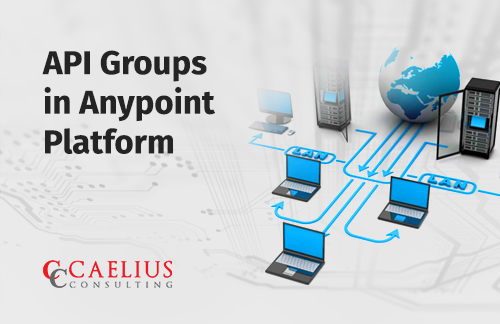 API groups in Anypoint Platform