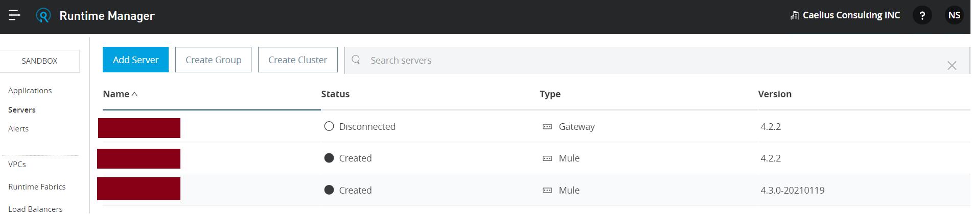 Standalone Runtime server
