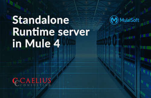 Standalone Runtime server in Mule